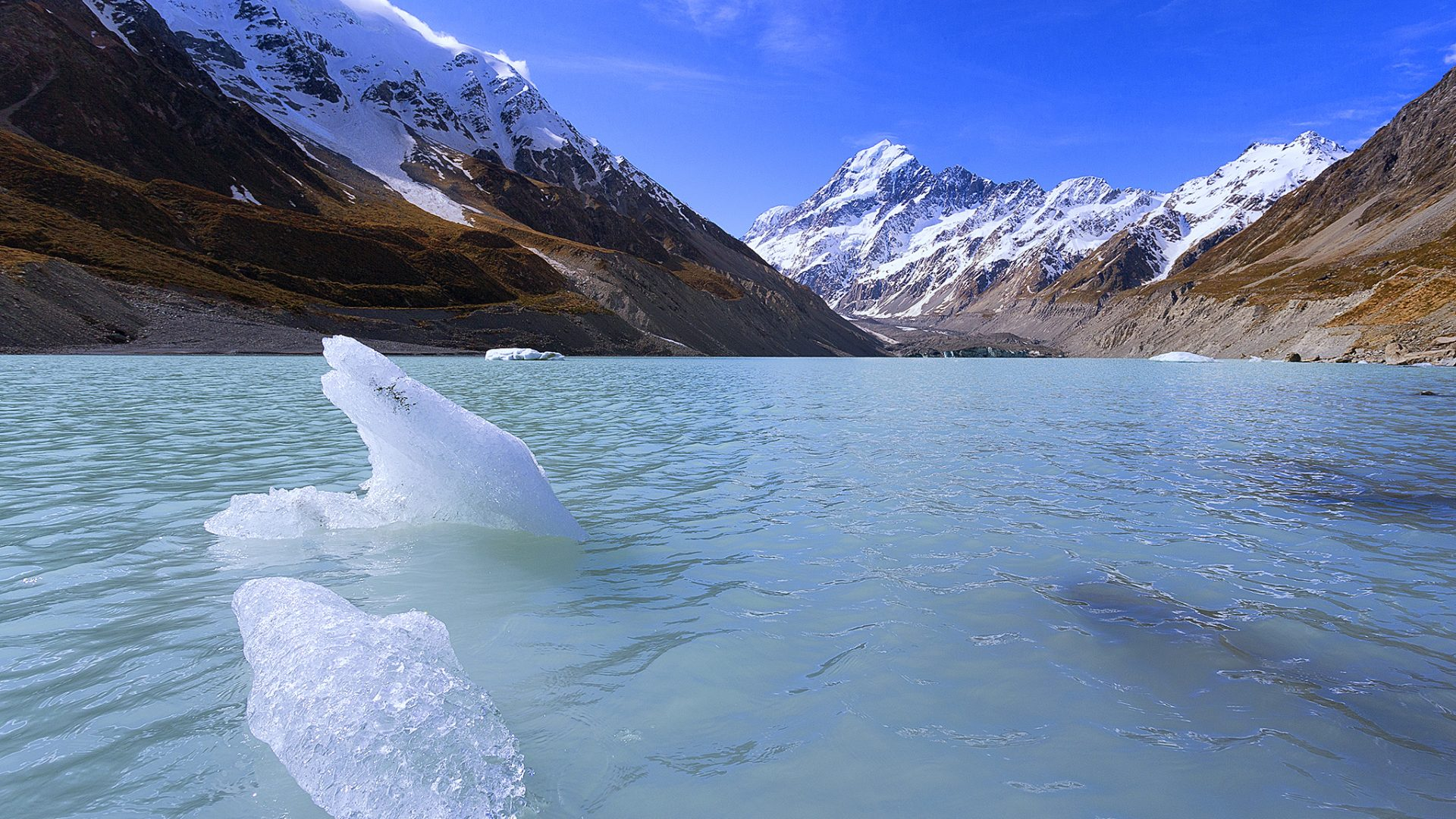 Hooker Glacier, New Zealand